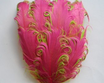 1 Pink on Lime Curled Goose Feather Pad