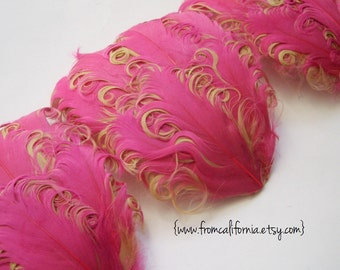 CLEARANCE - Imperfect Pink on Champagne Curled Goose Feather Pads - 2.75 ea