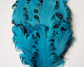 Nagorie Feather Pad - 1 Turquoise on Black Curled Goose Pad
