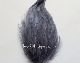 Gray Hackle Feather Pad