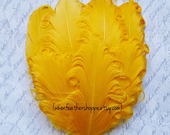 1 Yellow Curled Goose Feather Pad