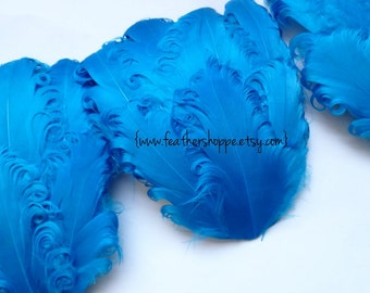 CLEARANCE - Imperfect Turquoise Curled Goose Feather Pads- 3.00 ea