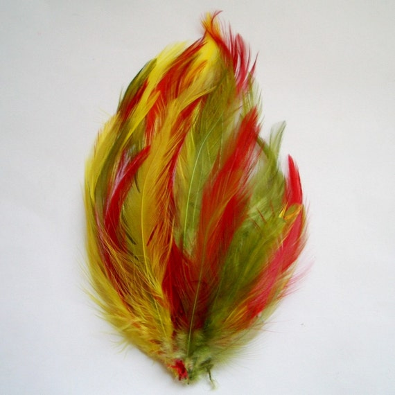 New Orleans Hackle Feather Pad From Feathershoppe On Etsy