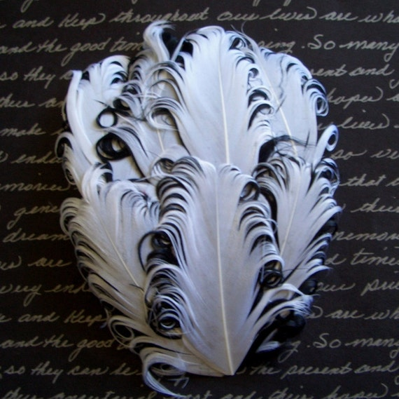 CLEARANCE - Imperfect White/Black Curled Goose Pads - 3.00 ea