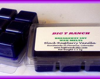Black Raspberry Vanilla - Breakaway Melts - Tarts - Highly Scented - Purple