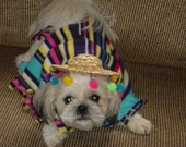 Fiesta Dog Poncho Costume