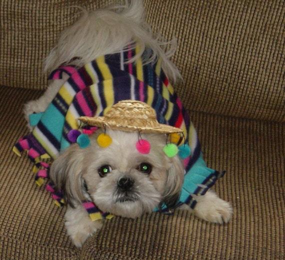 Fiesta Dog Poncho Costume