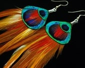 Fire in the Sky -  Long Peacock Feather Earrings - - Ready to Ship