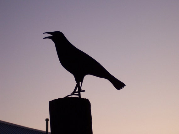 Ground Crow/Raven Silhouette/ metal crow/ metal bird/ metal garden art/ metal raven/ metal bird/ primitive crow