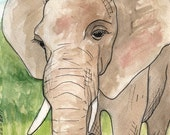 Happy Elephant limited edition 1 of 80 fine art giclee PRINT of my drawing 5x7 inches