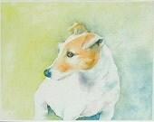 Jack Russell Terrier Notecard