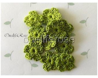 Crochet Flowers ( Applegreen00205)