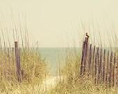 "Beach Sand Dune Fence South Carolina - ""Hazy Days of Summer"" - 8x10 Soft Color Nature Photo Print - Beach House Decor Yellow Green Pale Aqu"
