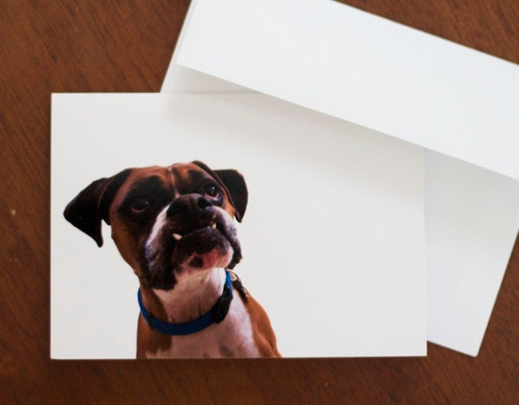 Are you talking to me - Silly Boxer Face - Dog Photo Greeting Card