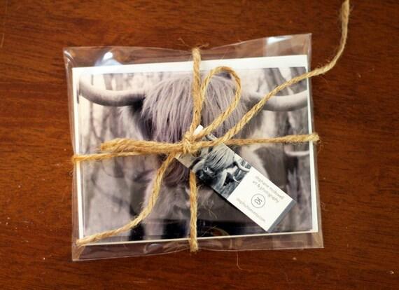 Scottish Highland Hairy Cow - Gift Set of 4 Photo Greeting Cards
