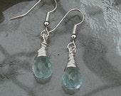 Blue Crystal Ear Rings