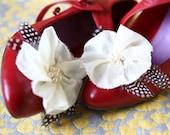 custom shoe lovelies.