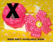 SALE Blooms for Spring Dog Collar with Pink Bow, Size XSmall Only