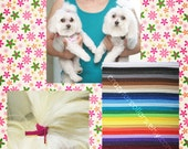 4 Top Knot Tamers for your Dog's Hair--TKTamer, Dog Hair Bow Alternative, No Rubber Bands