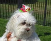 """Set of 3 """"Squiggles"""" Top Knot Tamers for your Dog's Hair--TKTamer, Dog Hair Bow Alternative, No Rubber Bands"""