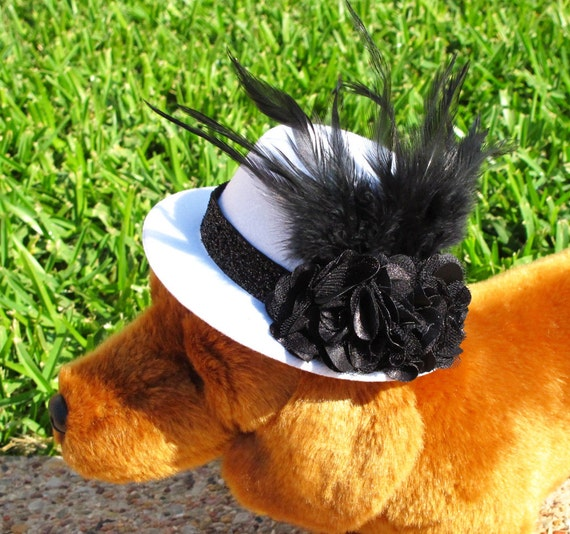 Hats for Hounds--Derby Classic Mini Hat, Fascinator, Photo Prop for your Pet
