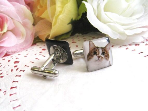 Cute Cat Cufflinks - M012-T