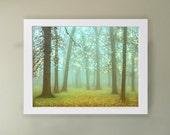 Wonderland Art Print.  Landscape photography, tree photography.  Sparkling trees perfect  kids room art.