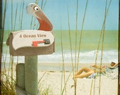 4 Ocean View Art Print.  Beach photography, nature photography, seagull, mailbox, humor, whimsical photography.