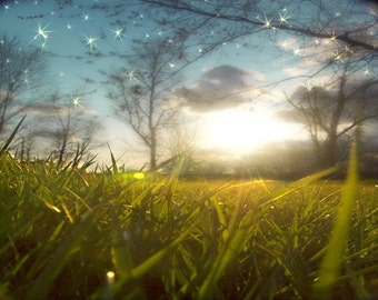 Daydreaming Art Print.  Splendid green grass and sparkling blue sky during sunset.  Landscape photography.