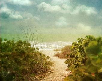 Beach Dreams II - Art Print.  Beach photography, beach art, path to beach, baby blue, sea green, beach grass. Landscape photography.