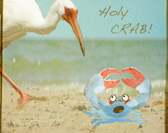 Holy Crab - Art Print. Whimsical photography, collage, egret, beach photography, humor photography, naples, florida.