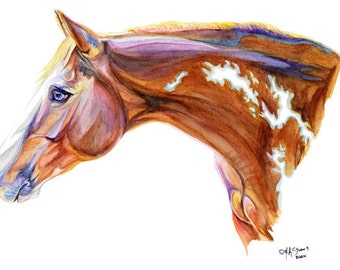 Paint Pinto Horse Art Print of Watercolor Painting Gift for the Horse Lover 11x14
