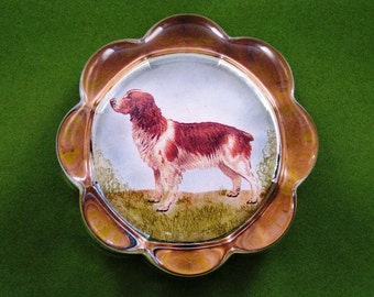 Welsh Springer Spaniel Dog Portrait Scallop Glass Paperweight Home Decor