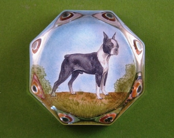 Boston Terrier Dog Portrait Octagonal Glass Paperweight Home Decor
