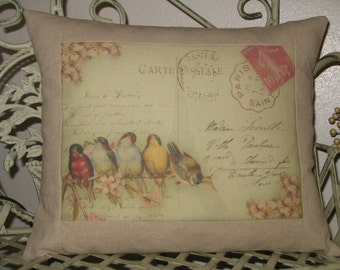 Rainbow of French Birds Carte Postale  Bird Pillow - Vintage Green Background