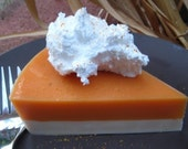 Thanksgiving Sweet Potato Pie Soap