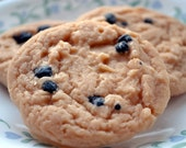 Cookie Soap - Chocolate Chip Cookie Vegan Soap
