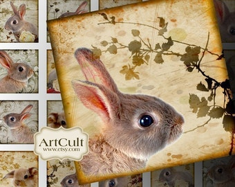Digital Collage Sheets BUNNIES 1x1 inch and 7/8x7/8 inch size images Printable download for glass and resin Pendants magnets ArtCult papers
