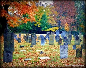 Fall cemetery. Fine art photograph. Matted.