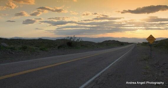 Open Range. 4 X 8 panoramic fine art photograph