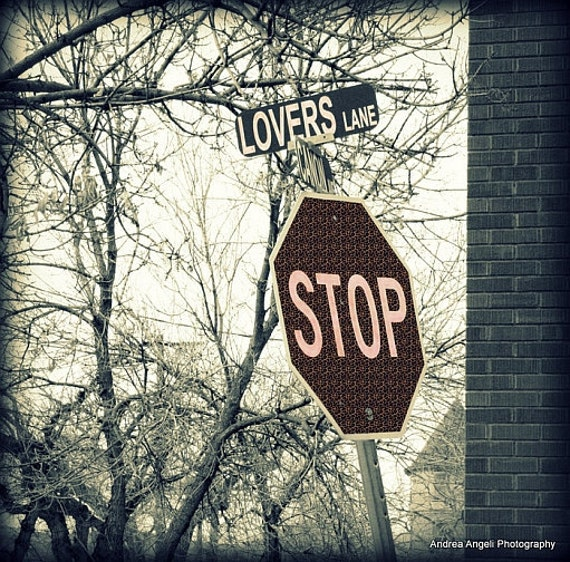 Lovers Lane. Fine art photo. Metallic.