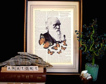 CHARLES DARWIN art print wall decor evolution natural science monarch butterflies on upcycled vintage dictionary text book page 8x10, 5x7