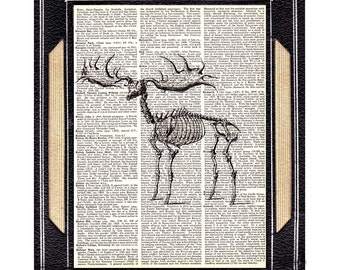 Dictionary art print ELK SKELETON animal anatomy black white upcycled book page wall decor moose deer woodland forest animal 8x10, 5x7