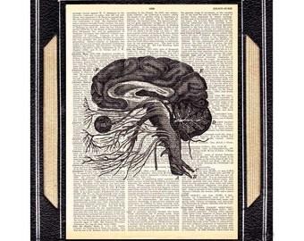 ANATOMICAL BRAIN art print on vintage dictionary text book page human anatomy black white illustration neurology neurologist psychology 8x10