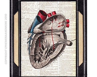 ANATOMICAL HEART art print vintage illustration human anatomy  medical science wall decor on dictionary book page black red blue 8x10, 5x7