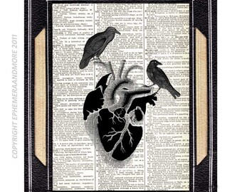 BLACK HEART with RAVENs art print on upcycled vintage dictionary book page anatomical human heart goth horror valentine crow love 8x10, 5x7