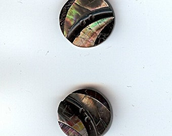 3/4 inch shell buttons (2) - grey - JHB