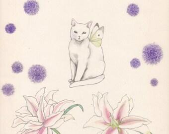 A cat in the garden - postcard