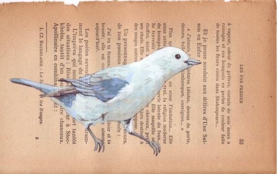 A little blue bird - Original painting