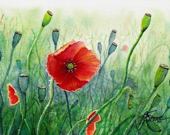 Tiny Bits of Nature - Poppies - Greeting Card